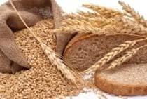 مصرف گندم 31 درصد کاهش یافت