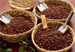 سقوط قیمت دانه قهوه در بازار جهانی