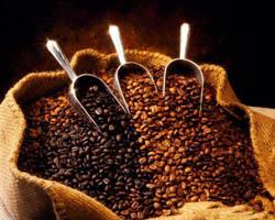 صعود ادامه دار قیمت دانه قهوه و کاهش قیمت کنجاله سویا در بازارهای جهانی