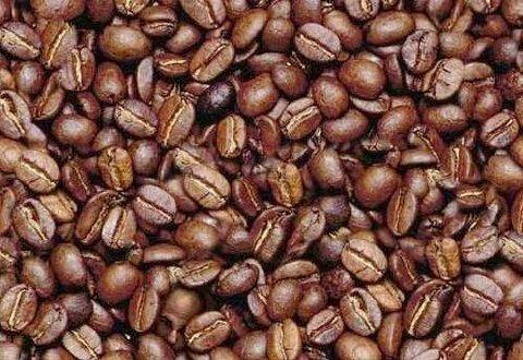 بیشترین سهم کاهش قیمت مواد غذایی در گرو دانه قهوه