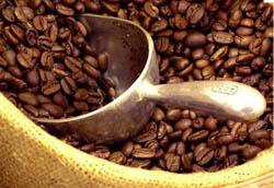 افزایش قیمت دانه قهوه و دانه کاکائو در بازار جهانی