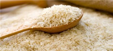 میزان واردات برنج به 537 هزار تن رسید