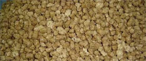 کنجاله سویا - Soybean meal
