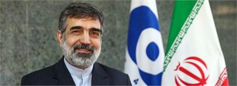 دو گزارش اخیر آژانس مثبت و رو به جلوست/تفاهم نهایی ایران و روسیه درباره ساخت دو نیروگاه