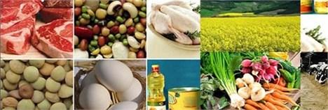 فرصت صادرات مواد غذایی به هشتمین اقتصاد جهان