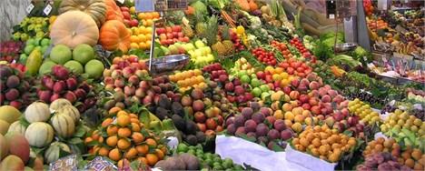 فاصله قیمت برخی محصولات کشاورزی از مزرعه تا بازار قابل توجیه نیست