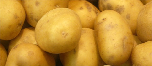 مشاهده نیترات در سیبزمینی و کالباس