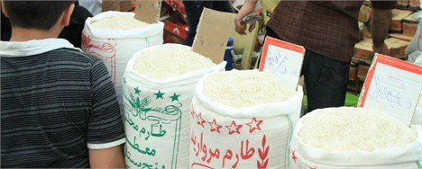 ضرورت واردات برنج بر اساس میزان آمار