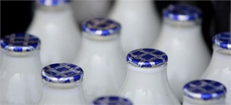خرید حمایتی 81 هزار تن شیرخام در 7 استان کشور