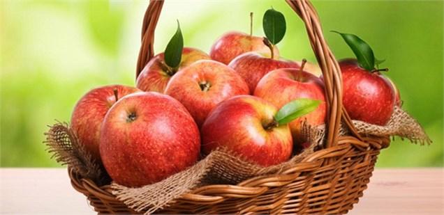 مازاد یک میلیون تنی تولید سیب در سالی که گذشت