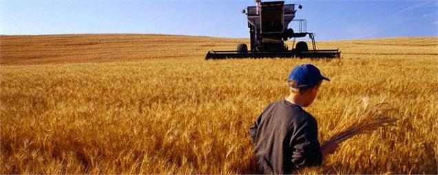 وضعیت بزرگترین طرح تاریخ کشاورزی ایران