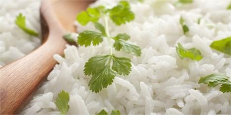 واردات بی رویه برنج نافی اقتصاد مقاومتی است