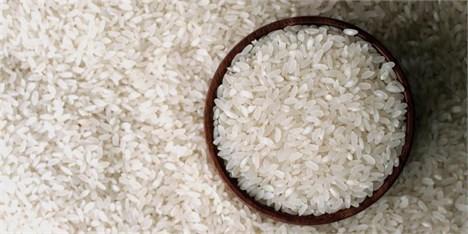 پرتقال فروش واردات برنج کیست؟