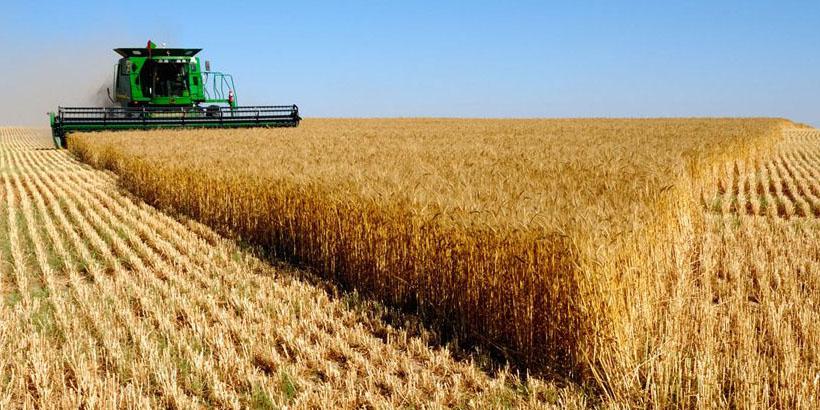 طرح قیمت تضمینی محصولات کشاورزی در بورس