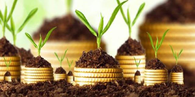 7 ویتامین لازم برای رابطه سالم سرمایهگذار و کارآفرین