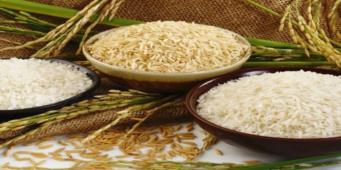 ورود غیرقانونی برنج بسیار نگرانکننده است