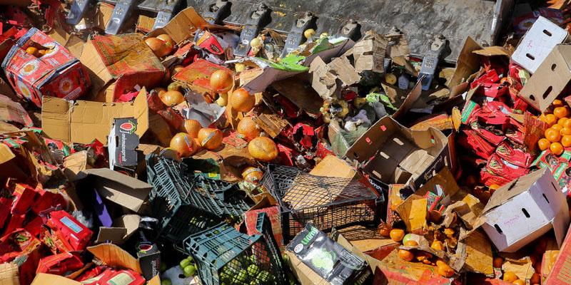 دستور دفن میوههای امحاء شده
