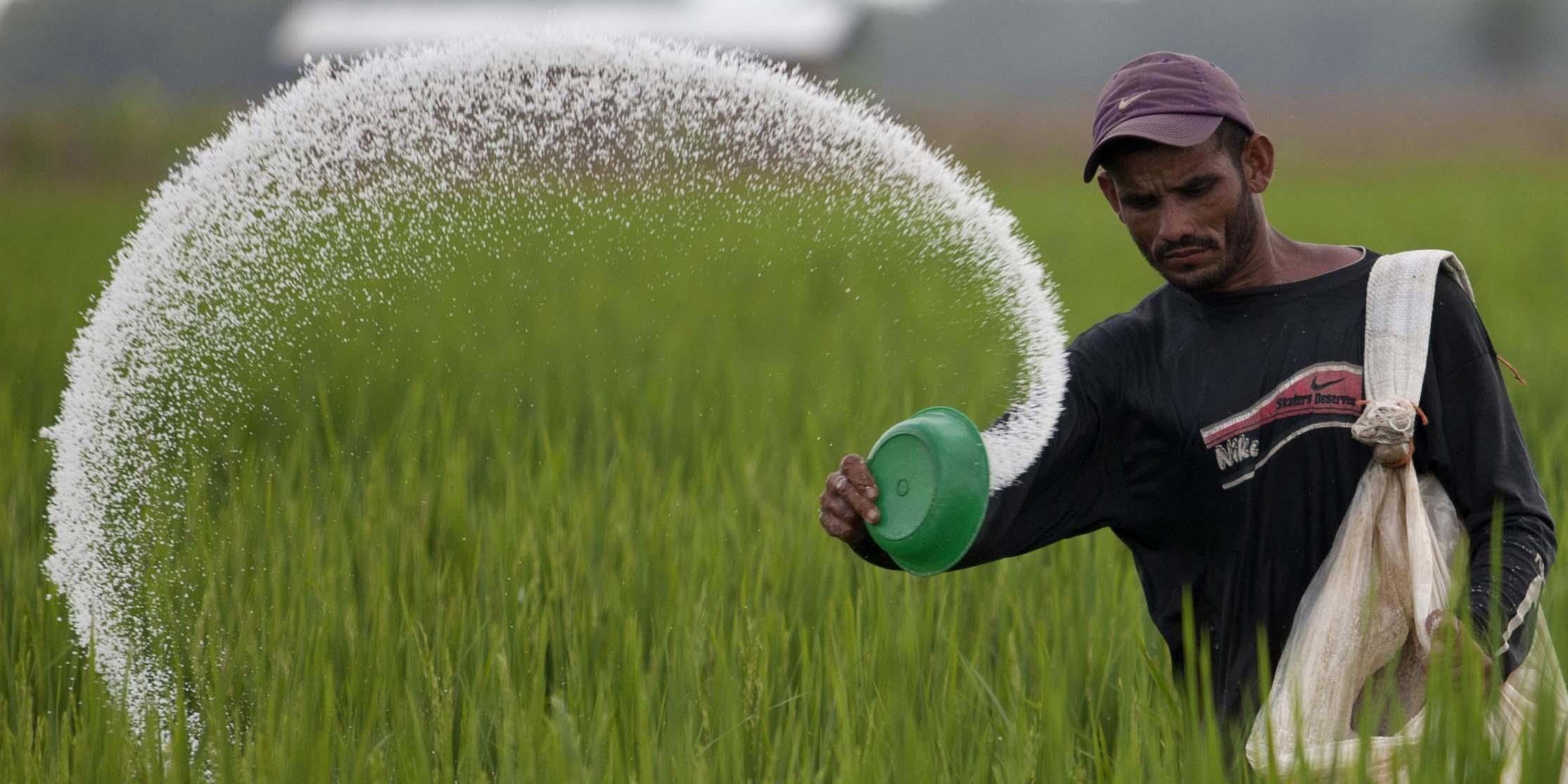 کود کشاورزی گران نمیشود