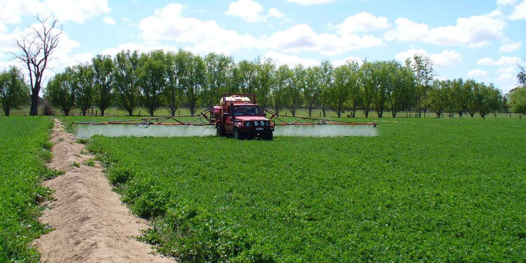 کشاورزان به موقع مزارع را علیه زنگ گندم سمپاشی کنند