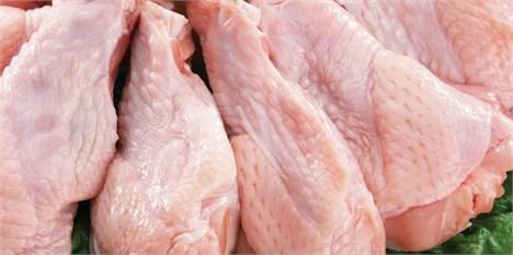 تنظیم بازار مرغ هنوز خصوصی نشده است