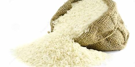 کاهش قیمت برنج تا ۲ ماه آینده