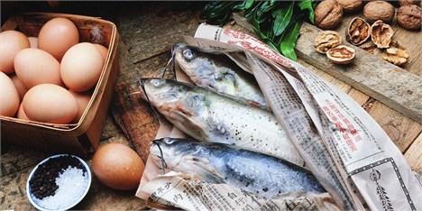 تولید 20 هزار تن ماهی به روش پرورش در قفس