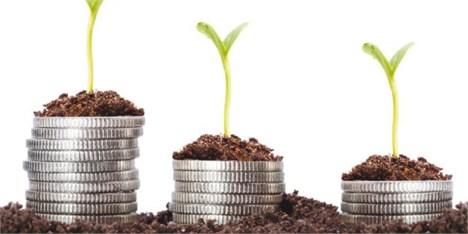 کمبود سرمایه، سد راه رونق کشاورزی