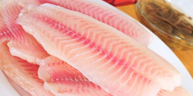 افزایش 6 درصدی تولید ماهی تیلاپیا در جهان