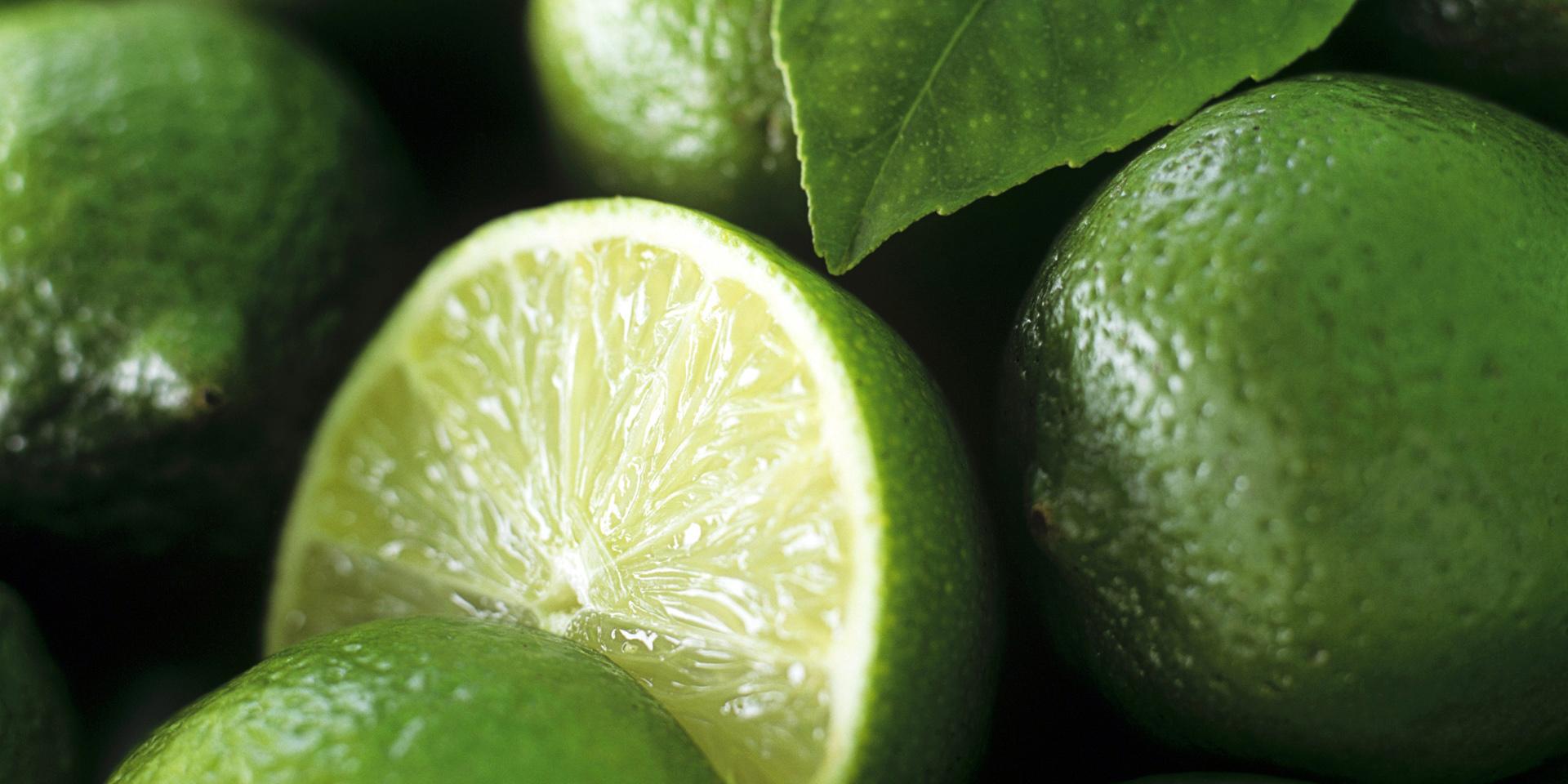 جولان لیمو قاچاق در قطب کشاورزی هرمزگان