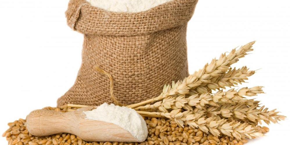 بررسی دقیق گندمهای 2 استان به دلیل احتمال جوانهزدگی محصول