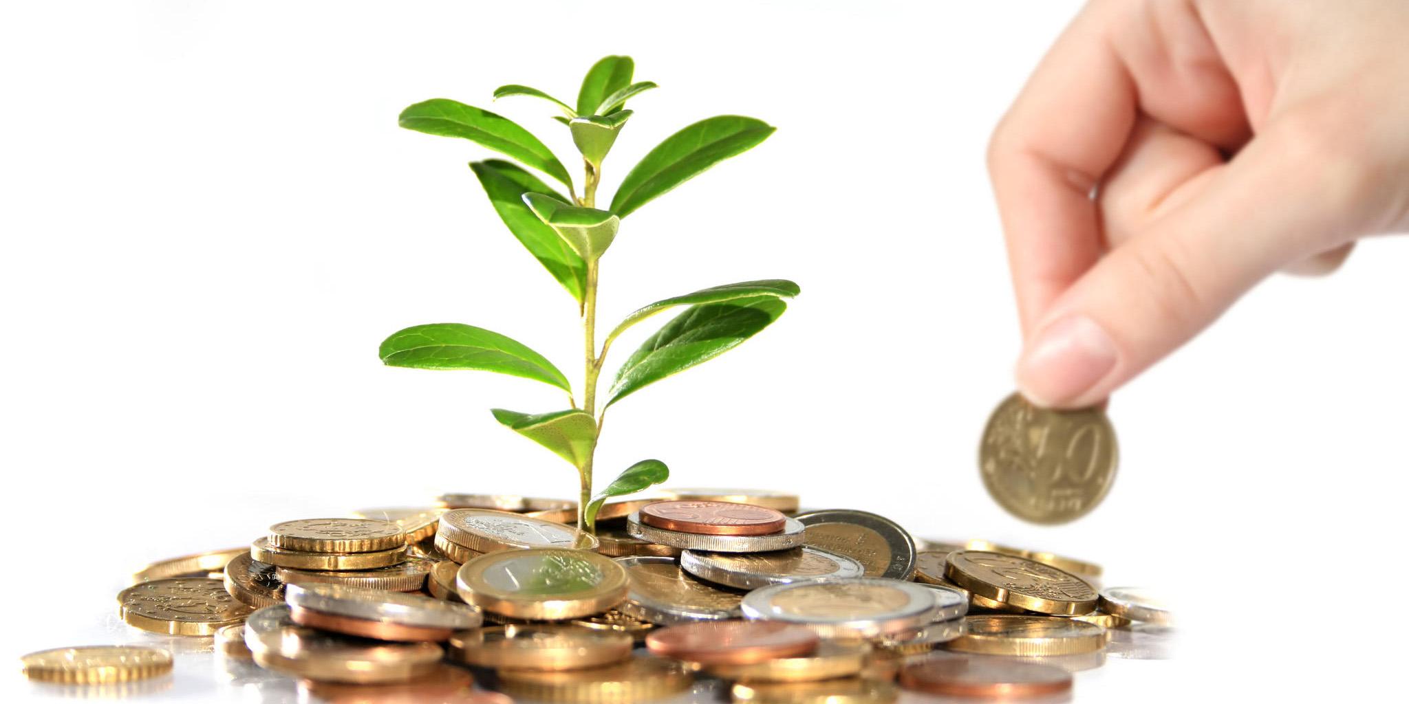 8 سیاست تامین مالی بنگاهها