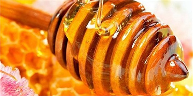 باید از ظرفیت تولید عسل در کشور استفاده کرد