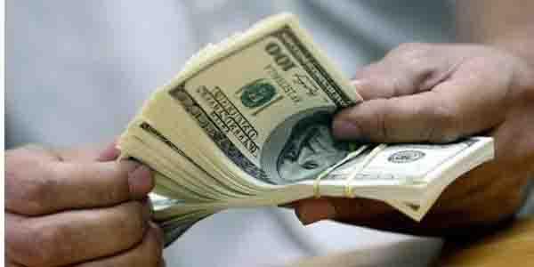 رییس پژوهشکده پولی و بانکی: نوسان در بازار آزاد ارز، مقطعی است