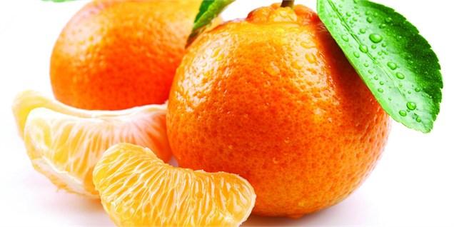 نارنگی بدون هسته پاکستان در راه بازارهای جهانی