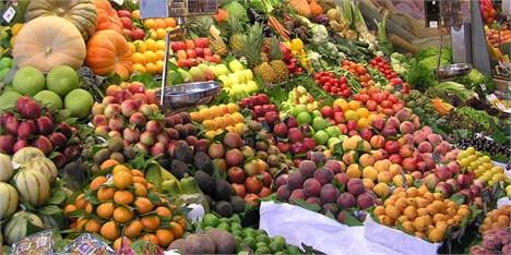 ابلاغ دستورالعملهای ویژه برای جلوگیری از قاچاق میوه