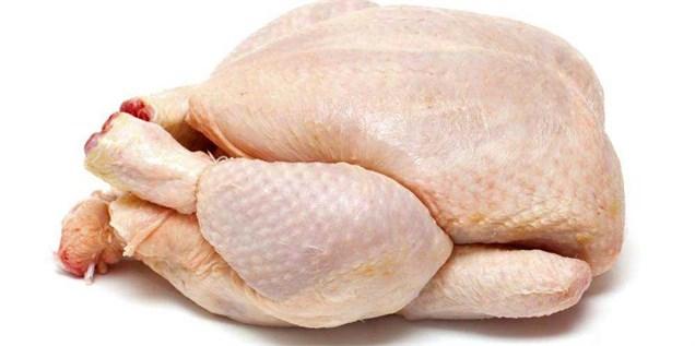 افزایش قیمت تمام شده تولید مرغ/صادرات متوقف شد
