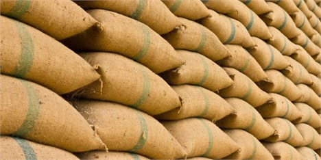 تولید در بخش کشاورزی دزفول به سه میلیون تن رسید