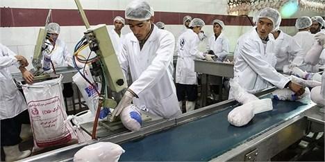 دلایل نوسان قیمت مرغ از زبان معاون وزیر کشاورزی