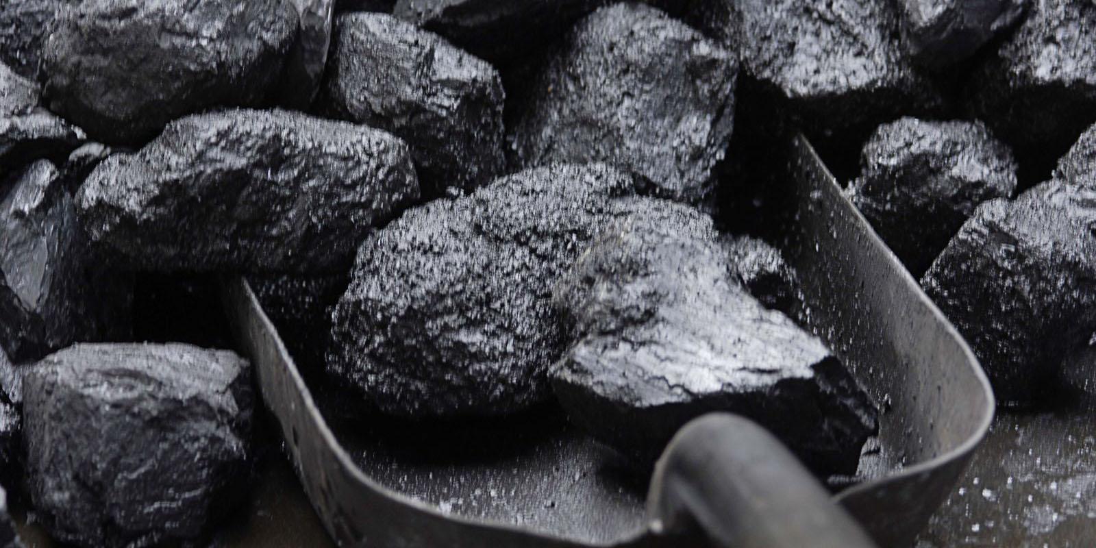 رشد واردات زغال سنگ به چین مقطعی است