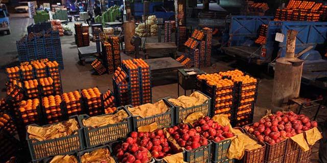پرتقال ایران به روسیه و ارمنستان میرود/تولید ۴.۷ میلیون تن مرکبات