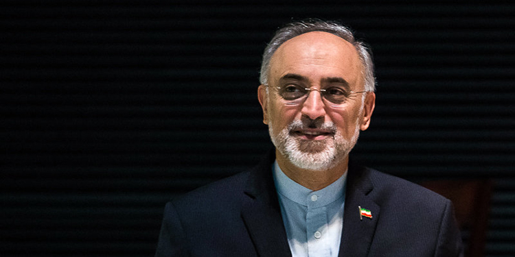صالحی: فروش ایرباس و بوئینگ راه را برای ورود بانکها و بیمههای بزرگ به ایران باز میکند