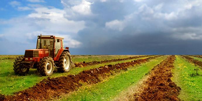 کشاورزی ستون فقرات استان کردستان