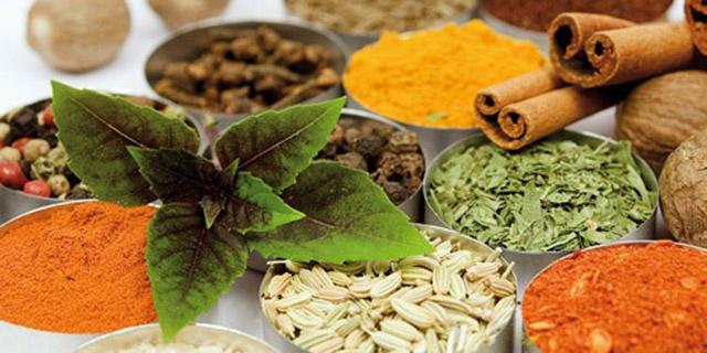 افزایش ۱۰ برابری درآمد کشاورزان از گیاهان دارویی