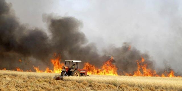 خسارت درگیریها در سوریه بر کشاورزی 16 میلیارد دلار برآورد شد