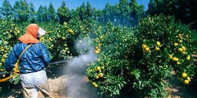 سموم پرخطر از سبد مصرف کشاورزان حذف میشود