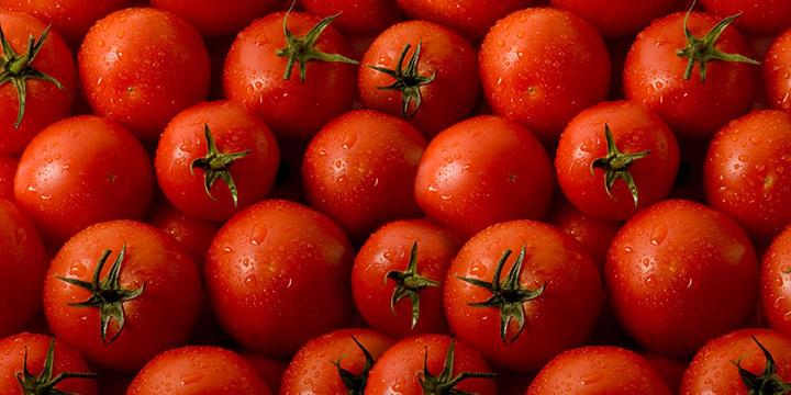 کاهش قیمت سیب زمینی و گوجه فرنگی/ ادامه ارزانی در بازار با تولیدات جدید