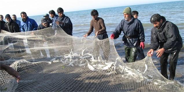 صید بیش از 2 هزار تن ماهی در میناب
