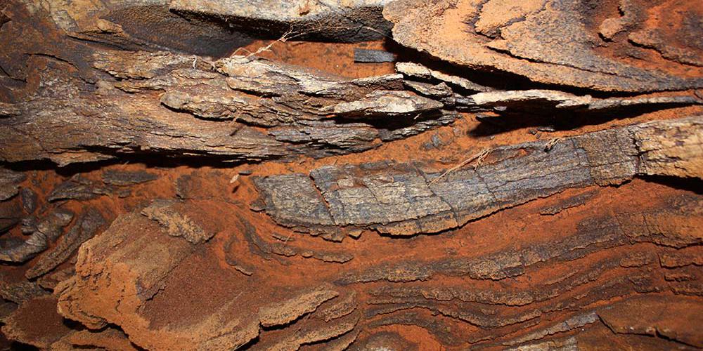 کارخانه گندله سازی فولاد مبارکه در سنگان به مرحله تولید آزمایشی رسید