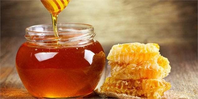 تولید بیش از 84 تن عسل در سیرجان
