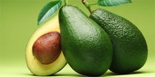 واردات یک میوه لوکس جدید به کشور آزاد شد